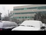 Зима в Эверете, 15 янв 2012